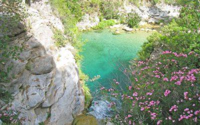 Vandra och Bada i Rio Verde